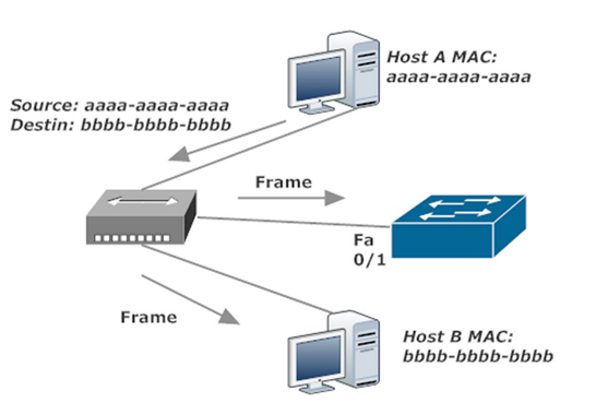 Host A Frame Is Forwarded To Host B AND Switch