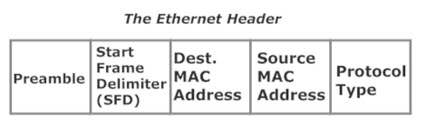 The Ethernet Header