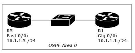 OSPF Network Segment